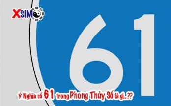 Ý nghĩa số 61 trong phong thủy sim là gì