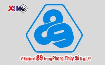 Ý Nghĩa số 89 trong Phong Thủy Số là gì...??