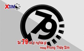 Số 79 có ý nghĩa gì trong Phong Thủy Sim