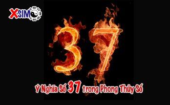 Ý nghĩa số 37 trong Phong Thủy Số