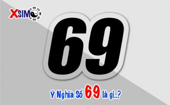 Số 69 có ý nghĩa gì...Ý nghĩa phong thủy của số 69