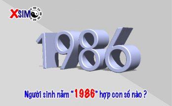 Người sinh năm 1986 hợp với số nào
