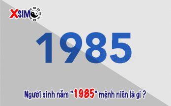 Người sinh năm 1985 mệnh NIÊN là gì.?